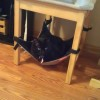 Cat Crib Sheena